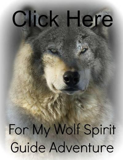 Animal Spirit Guide
